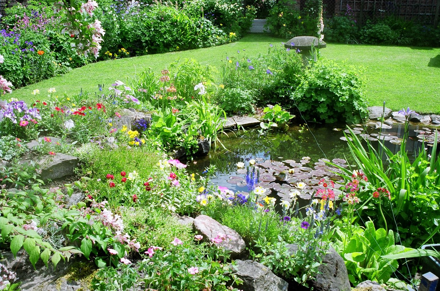 Is your yard wildlife friendly houston style magazine for Pond friendly plants