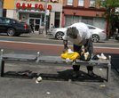 Homeless man in Harlem