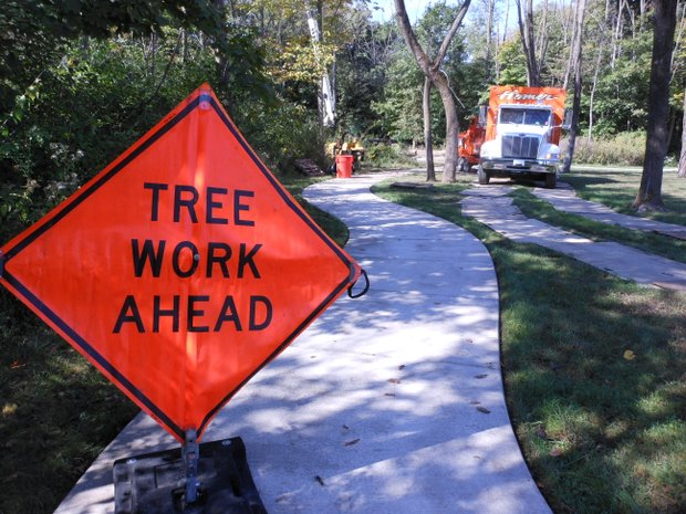 Area arborists and tree services employees volunteered at the Abraham Lincoln National Cemetery on Wednesday.