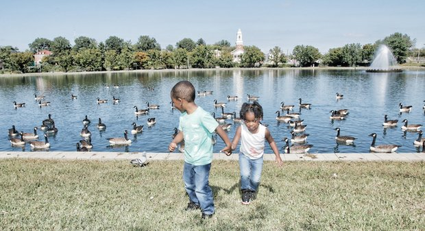 Bye, bye birdies -