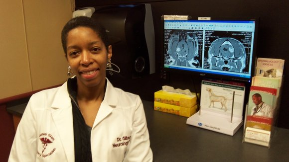 When New York City native Dr. Erika Gibson was a little girl, she knew she wanted to be a veterinarian. ...
