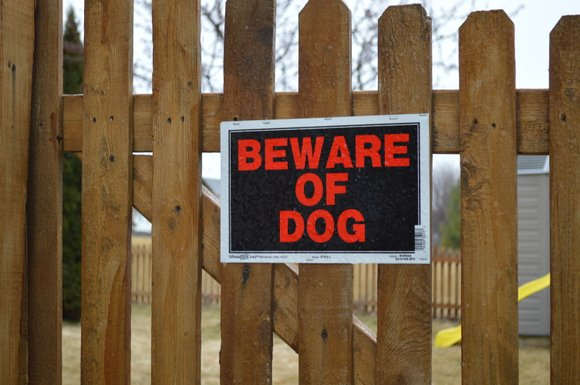 The City of Joliet plans to revise its laws that deal with vicious dog attacks as well as an agreement ...