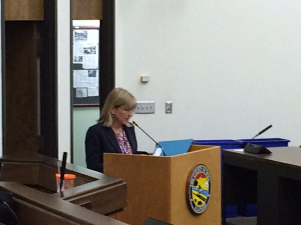 Will County Health Department Executive Director Susan Olenek addresses the Will County Board.