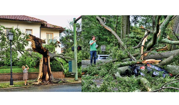 Cityscape //These scenes show examples of the impact of the June 16 storm that hammered Richmond and Henrico County and knocked out power to nearly 120,000 homes and businesses in the two localities. Left, Laurie Petersen photographs a tree split during the raging winds at Monument and Roseneath avenues in the West End. Right, Brad Spangler takes a closer look at a car crushed under trees felled by the storm that packed 70 mph winds and dropped 1.6 inches of rain. Location: Seminary and Claremont avenues in North Side. Richmond area damage estimates ranged from $2 million to $5 million, including $770,000 in damage to 10 Richmond school buildings. Officials said all but $100,000 of the schools damage would be covered by insurance. Dominion brought in hundreds of workers, who helped restore power by late Monday. Fifty crews from the City of Richmond, meanwhile, cleared fallen trees blocking 156 streets and removed 700 tons of tree debris through Tuesday. As of Tuesday night, Byrd Park, Battery Park Pool and Bryan Park had yet to reopen. The city and Henrico County are offering to haul away tree limbs from residents' property. In the city, residents can place limbs and brush near the curb or alley for pickup. County residents must register for service at (804) 501-4275 or online atwww.henrico.us/services/storm-debris-pickup. The county's deadline to sign up is Friday, June 24.