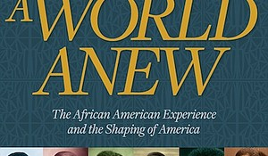 """""""Dream a World Anew"""" by the National Museum of African American History & Culture c.2016, Smithsonian Books   $40.00 / $47.00 Canada    288 pages"""