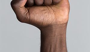 Raised fist/activisim