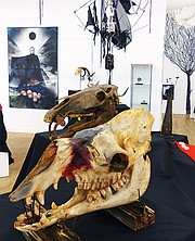"Background: ""Homage to Bergman,"" mixed media on canvas, Tim Hamill. Foreground: ""Horse and camel skulls,"" Bobbi Hamill."