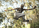 """Citizen"" choreography by Reggie Wilson"