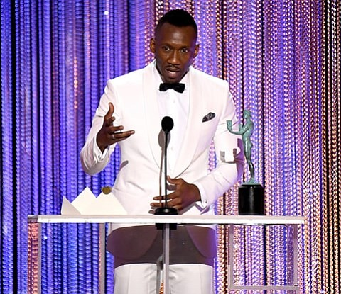 "Last night, the 23rd Annual Screen Actors Guild Awards were given away last night and A24's Moonlight received ""Outstanding Performance ..."
