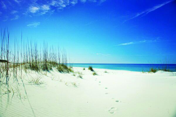 Panama city beach among country s best beaches houston for Bay motors panama city florida