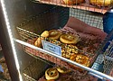BO's Bagels in Harlem