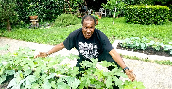 It is with great excitement that I write this first article in what will be a monthly feature: Sankofa Garden ...