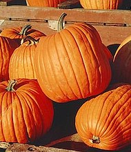 Blackwood New Jersey comes alive on the first Sunday of October with entertainers, vendors, shoppers and families who converge on the area for the Blackwood Pumpkin Festival on October 1.