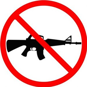 New Jersey's Assault Weapons Ban is a good basis for the feasibility of a renewed national ban. Readers interested in learning more or getting involved in such an effort are urged to visit peacecoalition.org and click the Ceasefire NJ icon on the right.