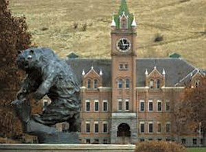 The director of the African American studies program at the University of Montana has been targeted for...