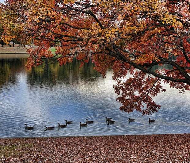 Tranquil fall scene in Byrd Park
