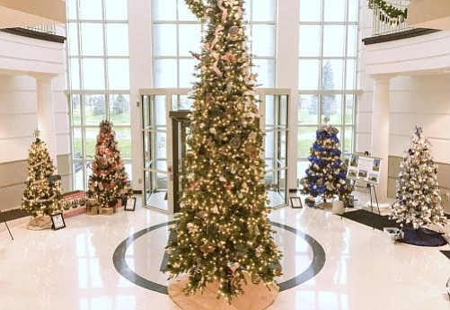 Get in the holiday spirit and check out the festival of trees now on display at Shorewood Village Hall.