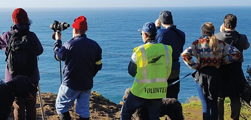 Oregon Parks and Recreation volunteers assist visitors on the Oregon Coast get a glimpse of migrating gray whales.