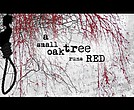"""A Small Oak Tree Run Reds"""