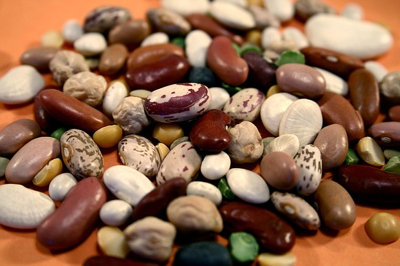 It is interesting how important the bean is in our food chain, and I don't mean jellybeans! For good nutrition ...
