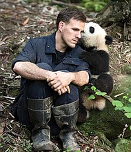"Dr. Jake Owens, Ph.D. (wildlife conservation biologist) and a giant panda at Panda Valley in Dujiangyan, China as seen in the new film, ""PANDAS,"" an IMAX Entertainment and Warner Bros. Pictures release."