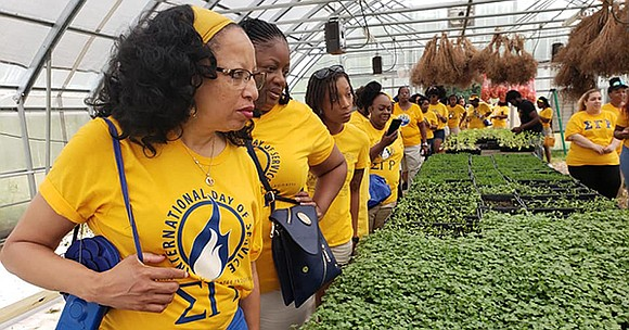 With less than four years to go until its centennial celebration, Sigma Gamma Rho Sorority is focused on accelerating and ...