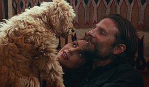 "Ally (Lady Gaga) and Jackson (Bradley Cooper) get a dog in ""A Star is Born."" Cooper, the film's director, cast his own dog, Charlie, to play the adult version of the pup."