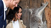 Prince Harry and his wife, Meghan, the expecting Duchess of Sussex, meet Ruby, a mother koala, during their visit Tuesday to Taronga Zoo in Sydney, Australia. The koala recently gave birth to two joeys that have been named for the royal couple.