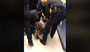 Woman arrested at Human Resources Administration office in Brooklyn