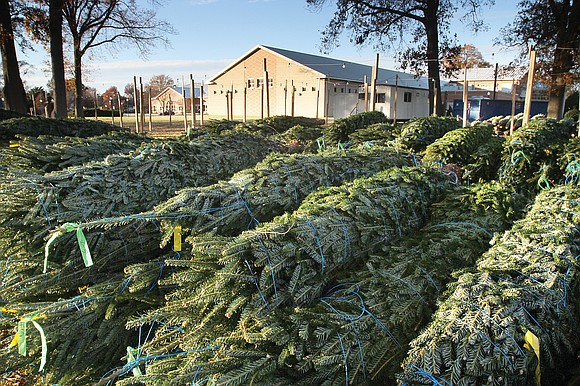 The Richmond Clean City Commission is helping residents safely dispose of Christmas trees by turning them into reusable mulch and ...