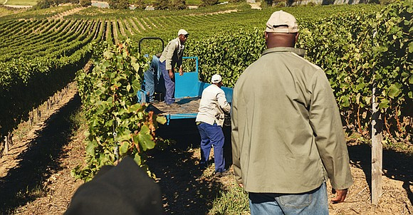 The Black Farmers and Agriculturalists recently hit a snag when the U.S. Court of Appeals, District of Columbia Circuit, denied ...