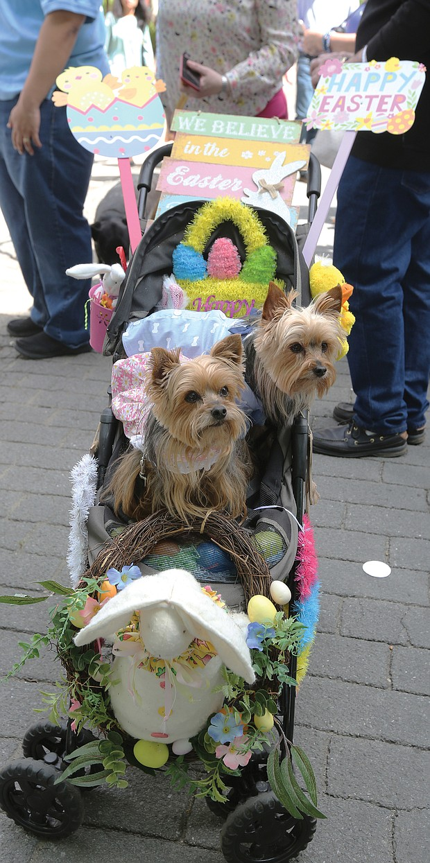 Thousands of people, including the Easter Bunny, stroll along Monument Avenue for what may be the final edition of Easter on Parade. Yorkshire terriers Lucy, 9, left, and Desi, 5, happily pause for photos in their carriage decorated by their owner, Robin Weil of Henrico County.