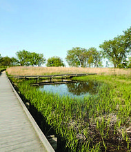 The South Shore Nature Sanctuary (pictured) is a hidden gem on the south lakefront where The Chicago Park District, in partnership with The Nature Conservancy, will host monthly Stewardships Days from now through October. Photo Credit: The Nature Conservancy/Emanuel Love