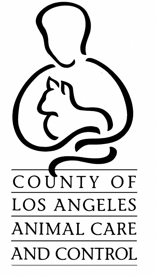 Officers from the County of Los Angeles Department of Animal Care and..