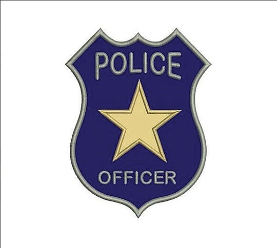 Royal Oak (Michigan) police have launched an internal investigation after officers stopped and..