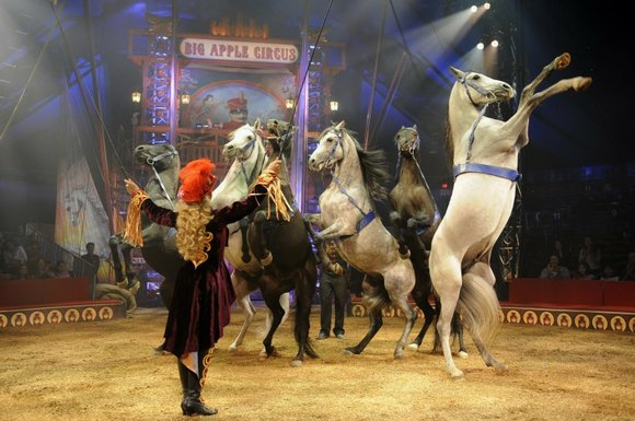 Take a trip in time back to simpler days and the origins of the circus...