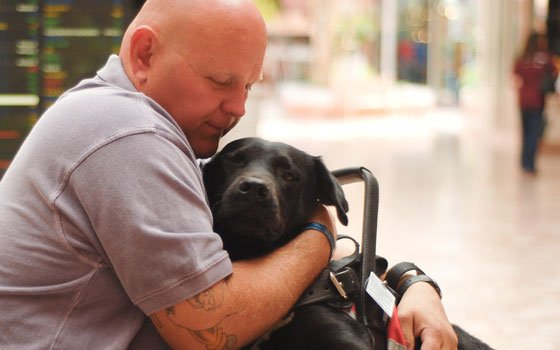Dogs help wounded veterans deal with disability and emotional trauma, but availability is scarceArmy Sgt. Russell Hall...