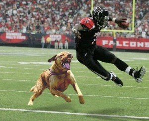 Michael Vick has been ordered to repay only $3.75 million of the $20 million sought by the Atlanta Falcons in ...