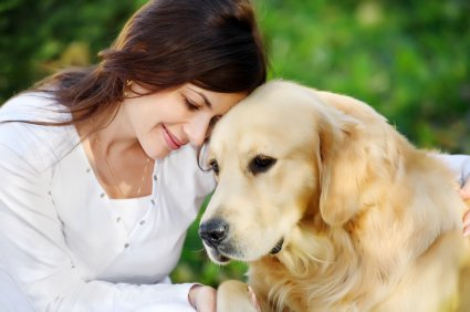 There's no mistaking it, baby pets are adorable and many grow up to become magnificent companions. Unfortunately pet owners often ...