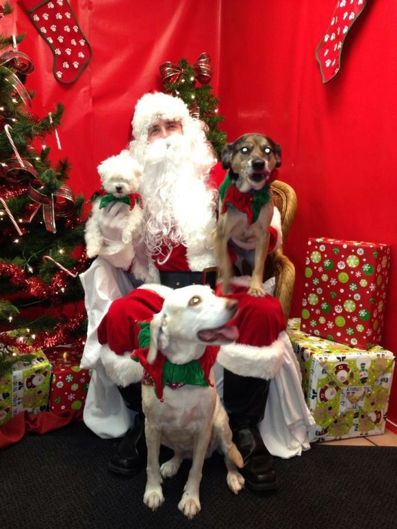 "Every year Crest Hill Animal Hospital, 1807 Plainfield Road, in Crest Hill, puts together its annual ""Santa Paws"" Event. This ..."