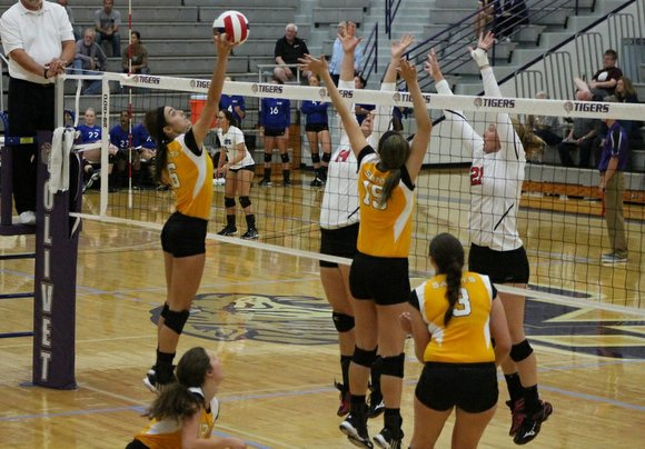 The University of St. Francis volleyball team split a pair of matches on the first day of the Olivet Nazarene ...