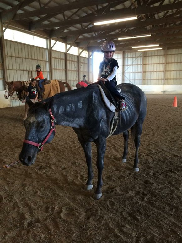 The Park District's Normantown Equestrian Center has been awarded a grant totaling $12,506 from the Illinois Equine Industry and Promotion ...