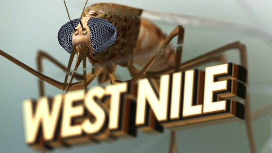 The Will County Health Department has suspended West Nile Virus (WNV) testing effective Thursday, October 1.