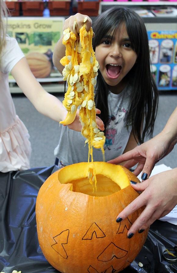 "Walker's Grove Elementary School first grader Eva Escobedo pulls out pumpkin ""guts"" during the pumpkin math activity in Mary Kay ..."