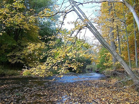 The Joliet Park District, in partnership with Illinois Audubon Society, its Will County Chapter, and the Illinois Nature Preserves Commission ...