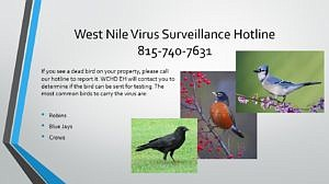 The Will County Health Department Environment Health Division reminds you that if you see a dead bird on your property, ...