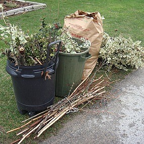 Waste Management will continue to pick up yard waste until December 7. Residents can use brown paper bags, or call ...