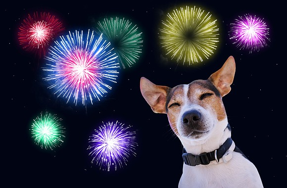 The 4th of July is around the corner, and in tradition with the holiday comes fireworks! For many of our ...