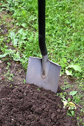 URBANA, Ill. – As the growing season wraps up and gardeners put vegetable beds to rest and clean and store ...