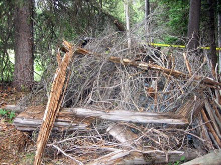 James DiMaggio camouflaged his car in brush, twigs, and logs in the Frank Church River of No Return Wilderness. Law enforcement found the car Friday morning, August 9, 2013 after they received a tip on Thursday that DiMaggio and Hannah Anderson may be in the area. An FBI tactical agent shot and killed DiMaggio, Anderson's alleged abductor, and the suspected murderer of Anderson's younger brother and mother.